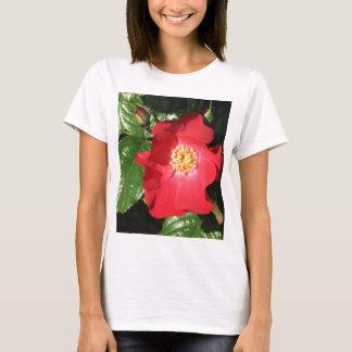Camiseta Rosa de arbusto 223 do açafrão