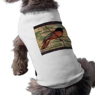 Camiseta Vintage Oriole na música
