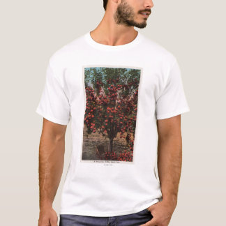 Camiseta Wenatchee, árvore de Apple do vale de WAA