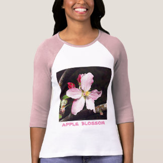 Camisetas Arkansas Apple floresce