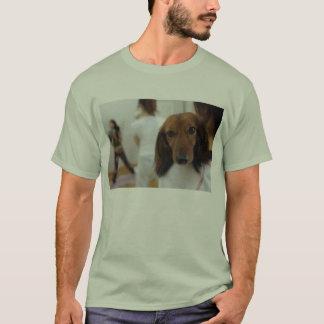 Camisetas descrição do cão