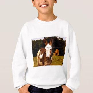 Camisetas donkey-52295_1920.jpg