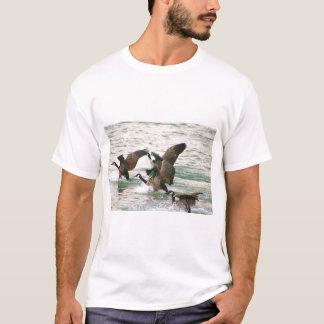 Camisetas dos gansos de Canadá