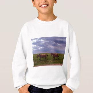 Camisetas Duas mulas