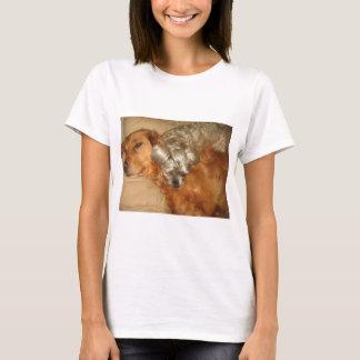 Camisetas Golden retriever e Maltipoo dos melhores amigos