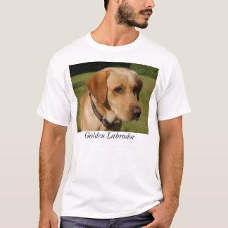 Camisetas Labrador dourado