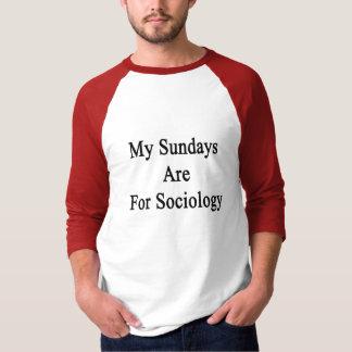Camisetas Meus domingos são para a Sociologia