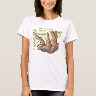 Camisetas Preguiça
