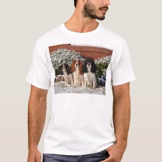 Camisetas Spaniel de rei Charles descuidado