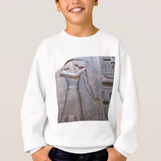Camisetas Thoth - deus sagrado do conhecimento