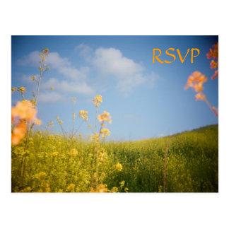 Campo de flor do cartão de RSVP Cartão Postal