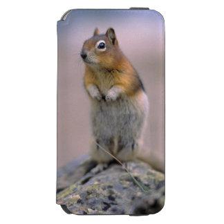 Canadá, Alberta, Banff NP. Um Ouro-envoltório Capa Carteira Incipio Watson™ Para iPhone 6