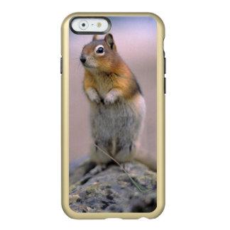 Canadá, Alberta, Banff NP. Um Ouro-envoltório Capa Incipio Feather® Shine Para iPhone 6