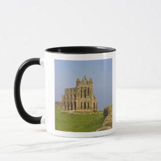 Caneca Abadia de Whitby, Whitby, North Yorkshire,