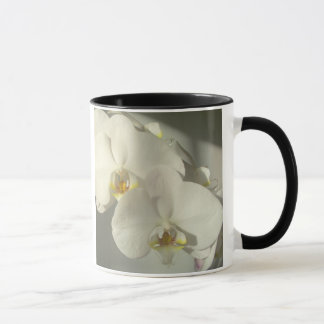 Caneca branca das orquídeas