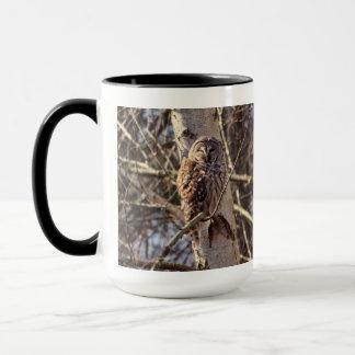 Caneca Coruja barrada em uma foto da árvore de vidoeiro