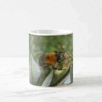 Caneca De Café a abelha