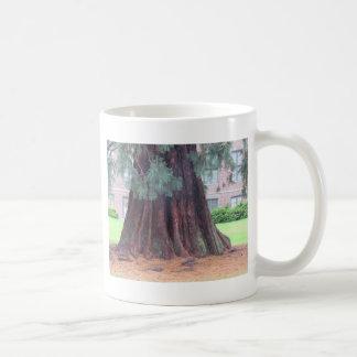 Caneca De Café A árvore