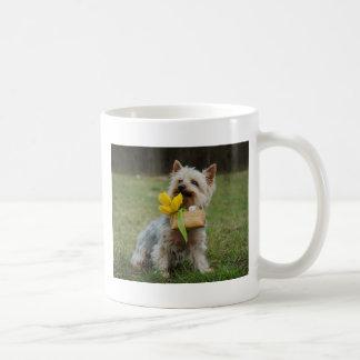 Caneca De Café Cão australiano de Terrier de seda