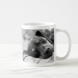 Caneca De Café Cão do Pinscher diminuto do sono