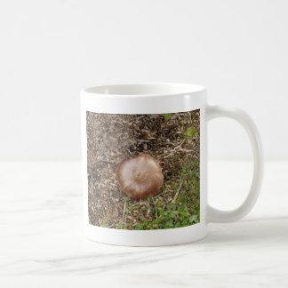Caneca De Café Cogumelo selvagem de Brown