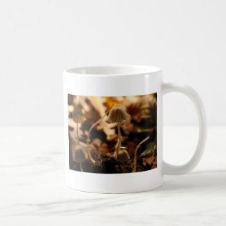 Caneca De Café Cogumelos delicados