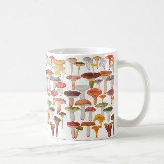 Caneca De Café Cogumelos dos cogumelos de Les