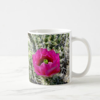 Caneca De Café Coleção cor-de-rosa da flor do cacto de ouriço