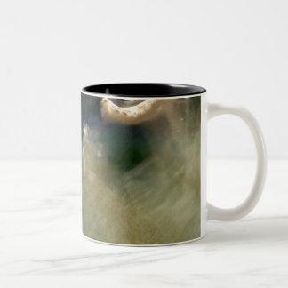 Caneca De Café Em Dois Tons Aquário astuto abstrato da natureza
