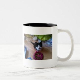 Caneca De Café Em Dois Tons Gato do gatinho