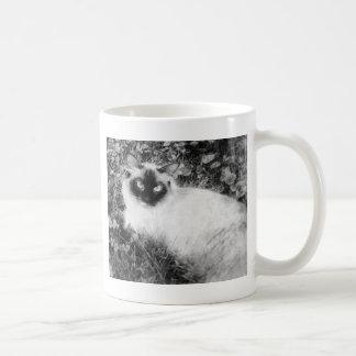 Caneca De Café Gatinho em preto e branco
