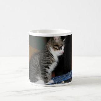 Caneca De Café Gatinho o gatinho
