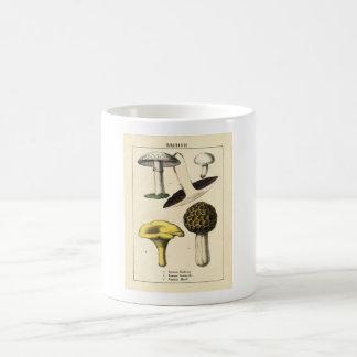 Caneca De Café Impressão botânico - cogumelos & fungos britânicos