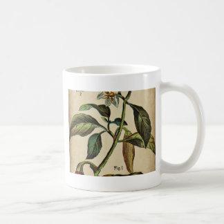 Caneca De Café Pimenta de Bell ânua do capsicum