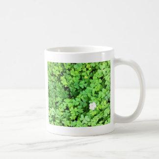 Caneca De Café Trevo verde que cresce no primavera com flor