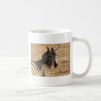 Caneca De Café Zebra no savana