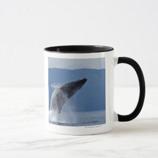Caneca EUA, Alaska, Angoon, baleia de Humpback (Megaptera