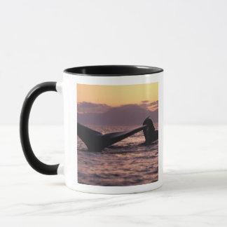 Caneca EUA, Alaska, baleias de Humpback internas da