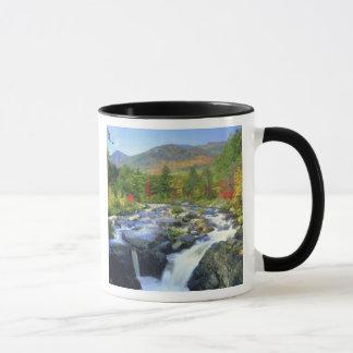 Caneca EUA, New York. Uma cachoeira no Adirondack