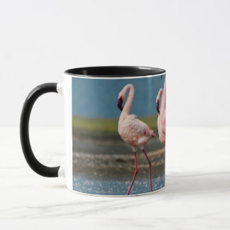Caneca Homem poucos flamingos (menor de Phoenicopterus)