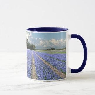 Caneca Jacintos azuis em um campo Holland