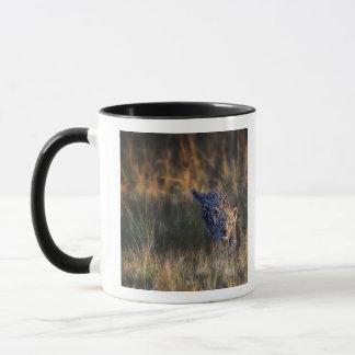 Caneca Panthera Pardus de Cub do leopardo) como visto no