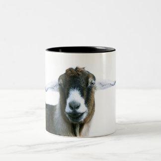 Caneca pateta da cabra