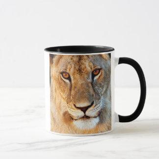 Caneca Retrato da leoa (Panthera Leo). Tarangire