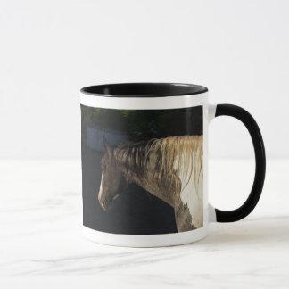 Caneca Sonhos do cavalo