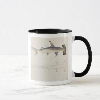 Caneca Um tubarão Martelo-dirigido, Loheia, atribuído