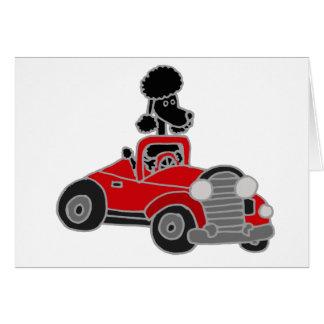 Caniche preta que conduz o carro convertível cartão comemorativo