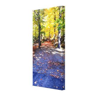Canvas coloridas do trajeto do outono