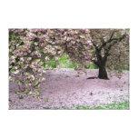 canvas da árvore da flor de cerejeira