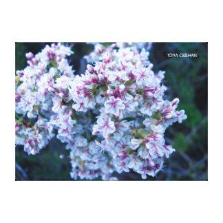 Canvas da fotografia da flor impressão em canvas